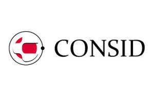 Logo Consid